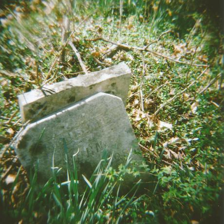 Taken with a Holga 120N